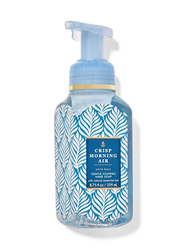 Crisp Morning Air Gentle Foaming Hand Soap